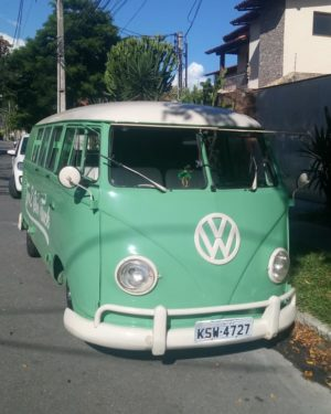 1961 VW Bus 11 Windows