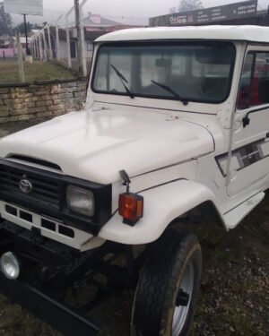 1991 Toytota Land Cruiser